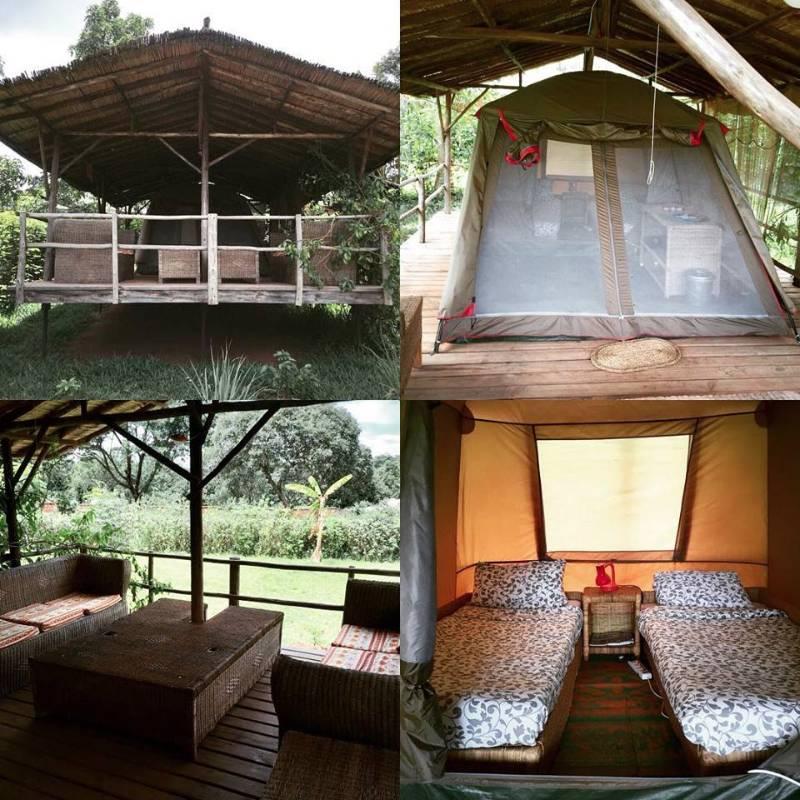 macondo camp malawi africa restaurant bar lodge camping